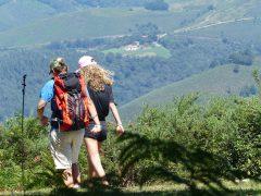 Quelles randonnées pouvez-vous faire à Villandraut durant votre séjour__cc-villandraut.fr